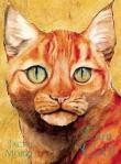 Yo soy el gato