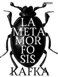Metamorfosis_12